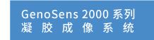 2000-系列.jpg